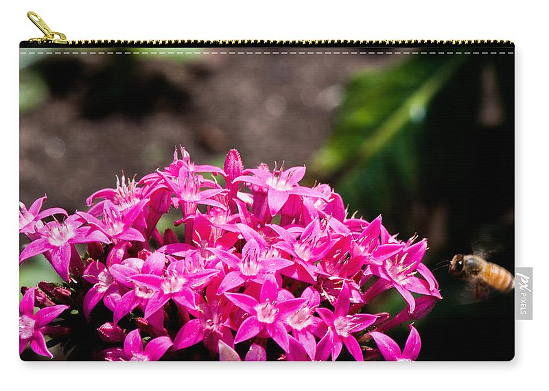Carry-all Pouch featuring the photograph Bee by Sue Conwell