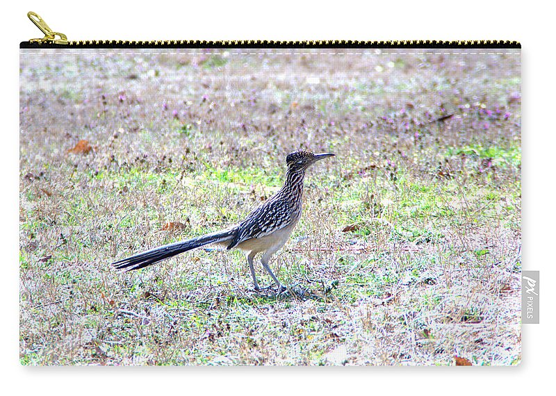 Beep Carry-all Pouch featuring the photograph Beep Beep by Darrell Clakley
