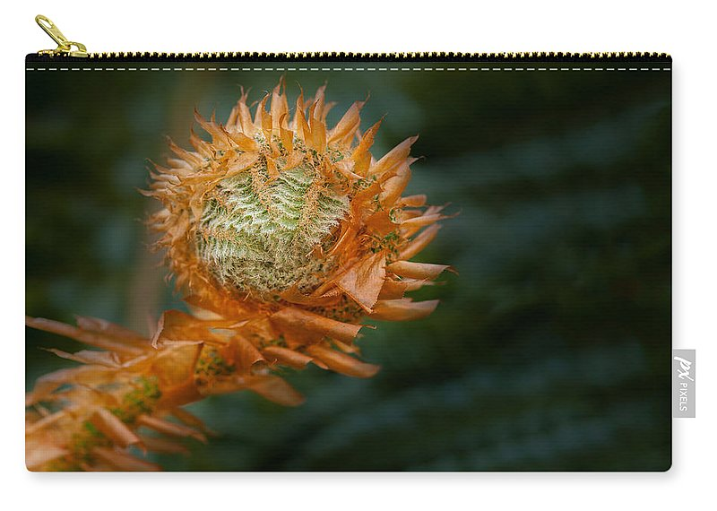 British Columbia Carry-all Pouch featuring the photograph Beginnings by Jacqui Boonstra