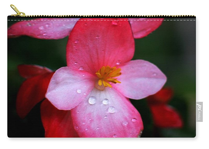 Begonia Carry-all Pouch featuring the photograph Begonia by Hazel Holland