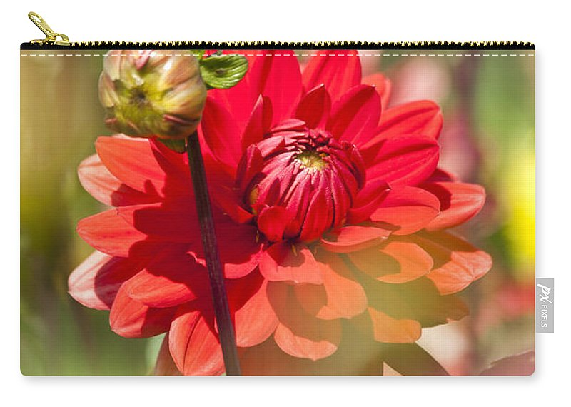 Heiko Carry-all Pouch featuring the photograph Behind The Scene by Heiko Koehrer-Wagner