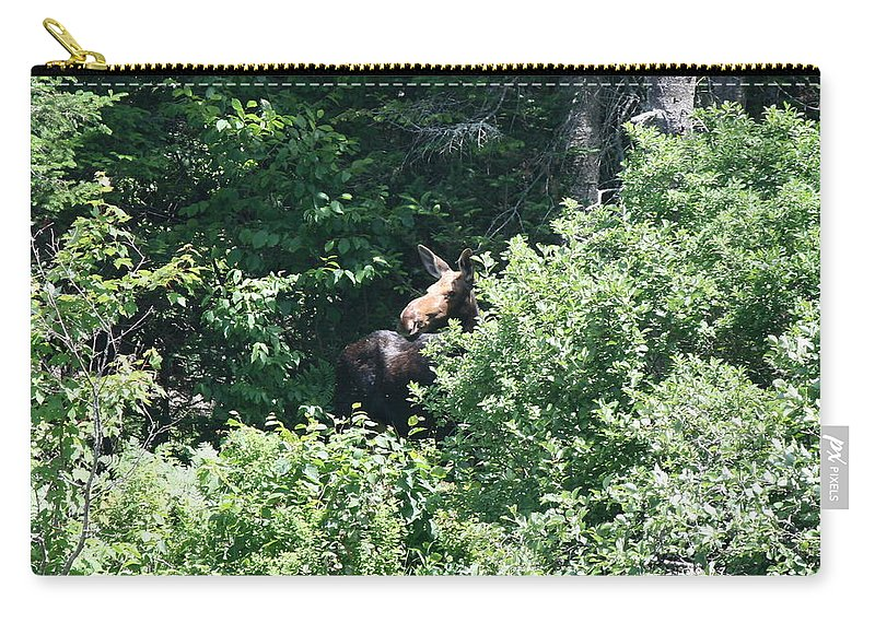 Moose Carry-all Pouch featuring the photograph Behind The Shrubs by Neal Eslinger