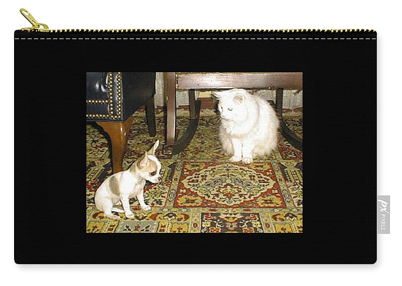 Chihuahua Carry-all Pouch featuring the photograph Being Humble by Leah Delano