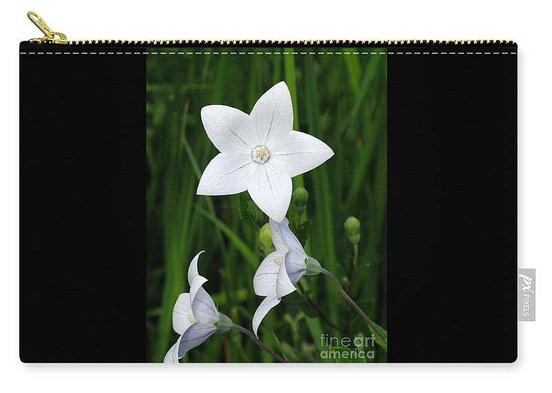 Bellflower Carry-all Pouch featuring the photograph Bellflower - Campanula Carpatica by Ann Horn