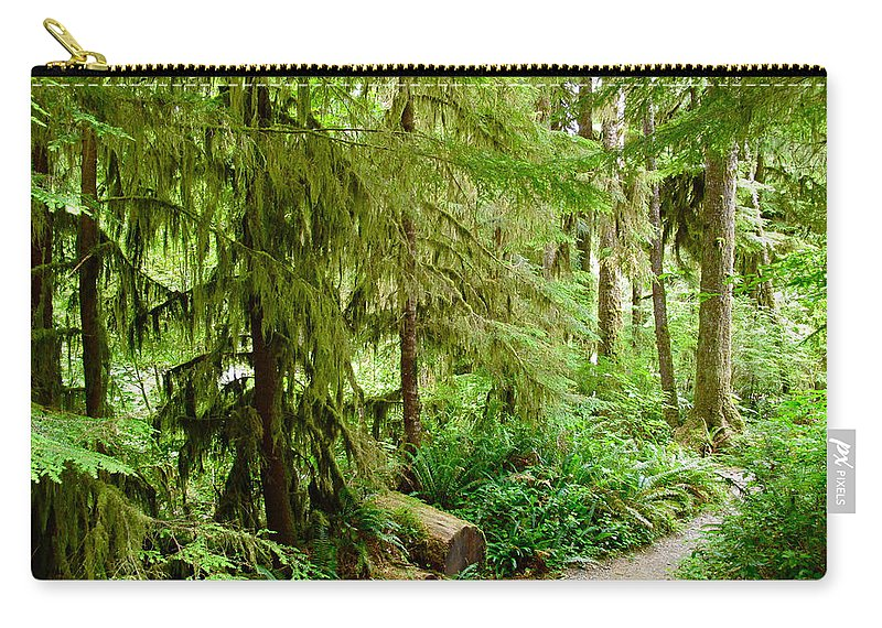 Trail Carry-all Pouch featuring the photograph Bend In The Rainforest by Lexi Heft