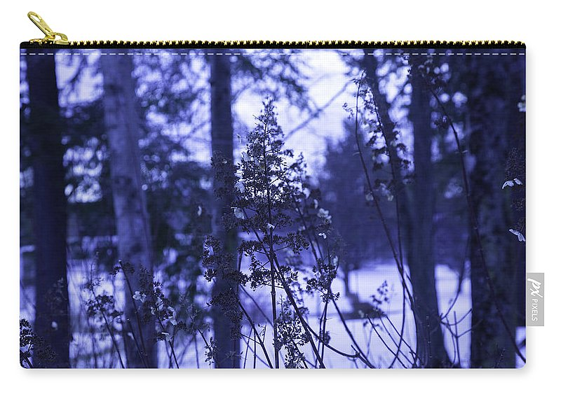Berkshires Carry-all Pouch featuring the photograph Berkshires Winter 8 - Massachusetts by Madeline Ellis