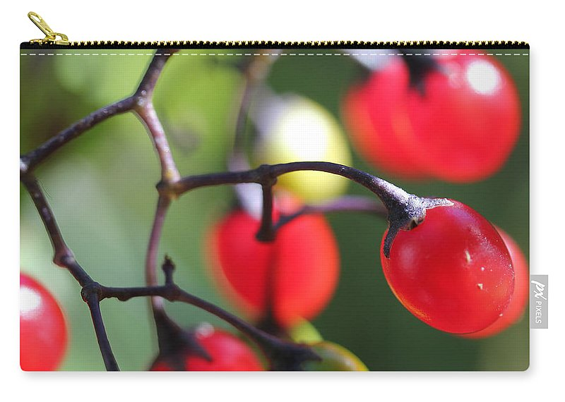 Berry Carry-all Pouch featuring the photograph Berries 2 by Mary Bedy
