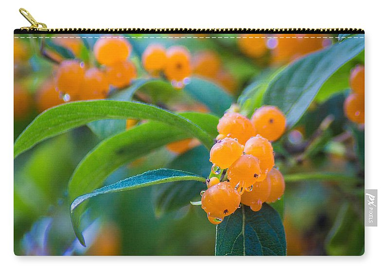 Berry Carry-all Pouch featuring the photograph Berrylicious by Bill Pevlor