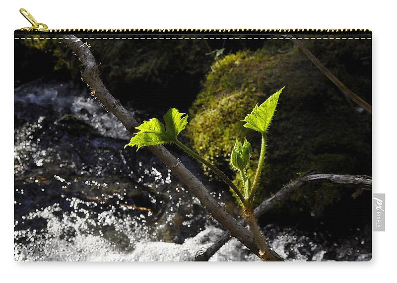Waterfall Carry-all Pouch featuring the photograph Beside The Waterfall by Cathy Mahnke