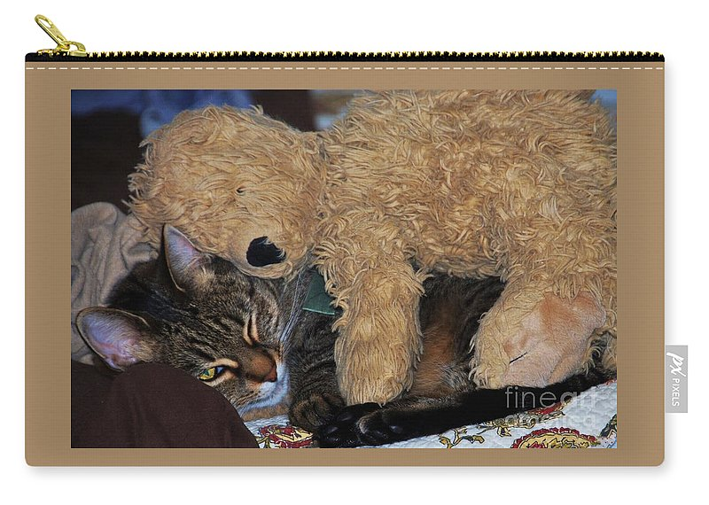 Feline Art Rascal Relaxation Teddy Bear Cute Pet Whimsical Moment Pet Portrait Animal Art Home Decor Canvas Print Metal Frame Wooden Print Poster Print Available On Greeting Cards Pouches Mugs Duvet Covers Phone Cases Tote Bags T Shirts Fleece Blankets And Weekender Tote Bags Carry-all Pouch featuring the photograph Best Buddies by Marcus Dagan