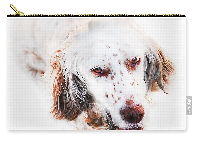 Dog Carry-all Pouch featuring the digital art Best Friend by Gina Dsgn