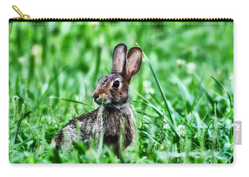 Better Get Started On Those Easter Eggs Carry-all Pouch featuring the photograph Better Get Started On Those Easter Eggs by Bill Cannon