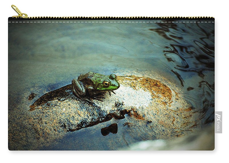 Rock Carry-all Pouch featuring the photograph Between A Frog And A Hard Place by Holly Blunkall