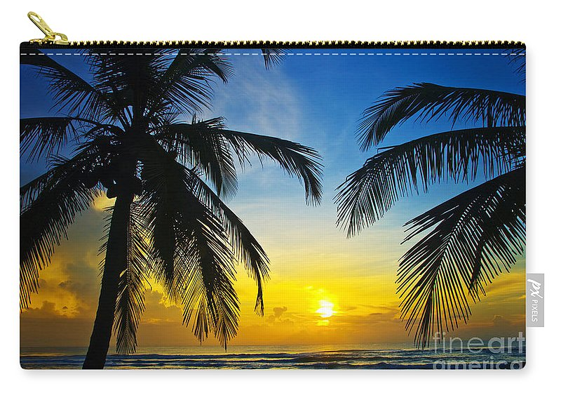 Palm Tree Carry-all Pouch featuring the photograph On The Edge by Thomas Levine