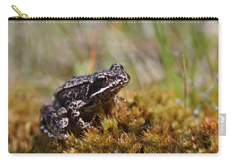 Cute Carry-all Pouch featuring the photograph Beutiful Frog On The Moss by Dreamland Media