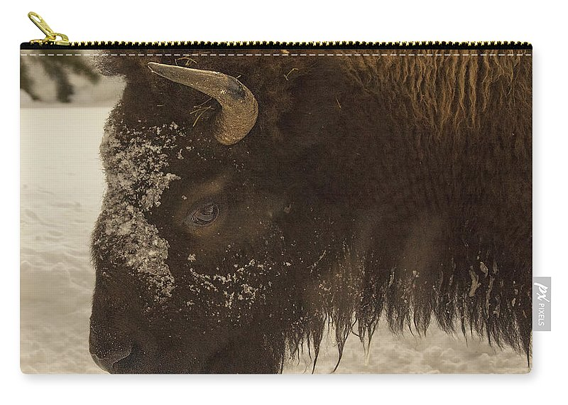 Beware Of The Bison Carry-all Pouch featuring the photograph Beware Of The Bison by Priscilla Burgers