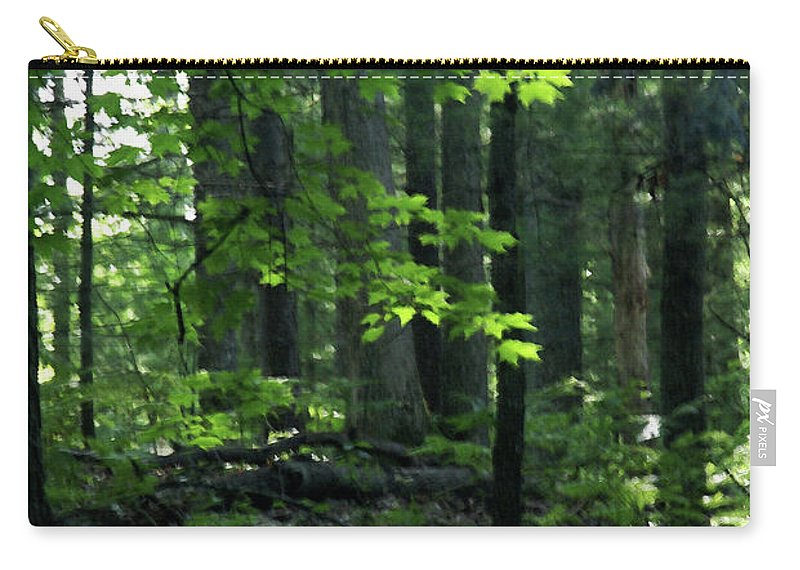 Forest Carry-all Pouch featuring the photograph Beyond The Trees by Linda Shafer