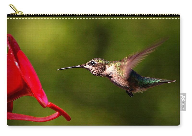 Birds Carry-all Pouch featuring the photograph Big Boy by Reid Callaway