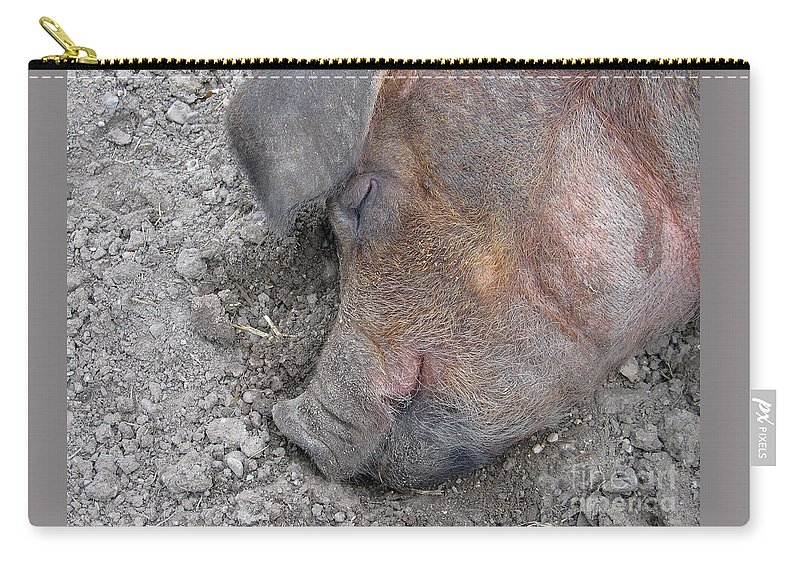 Pig Carry-all Pouch featuring the photograph Big Dreamer by Ann Horn