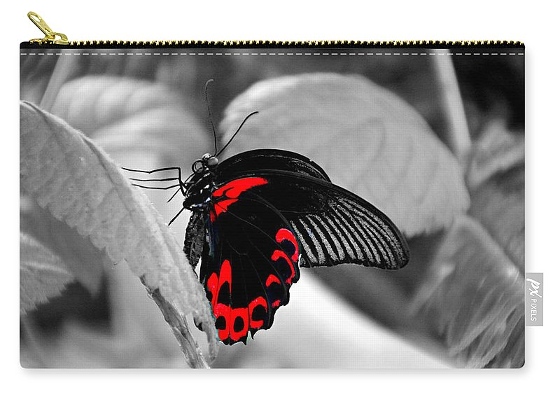 Change Carry-all Pouch featuring the photograph Big Red by Tina Meador