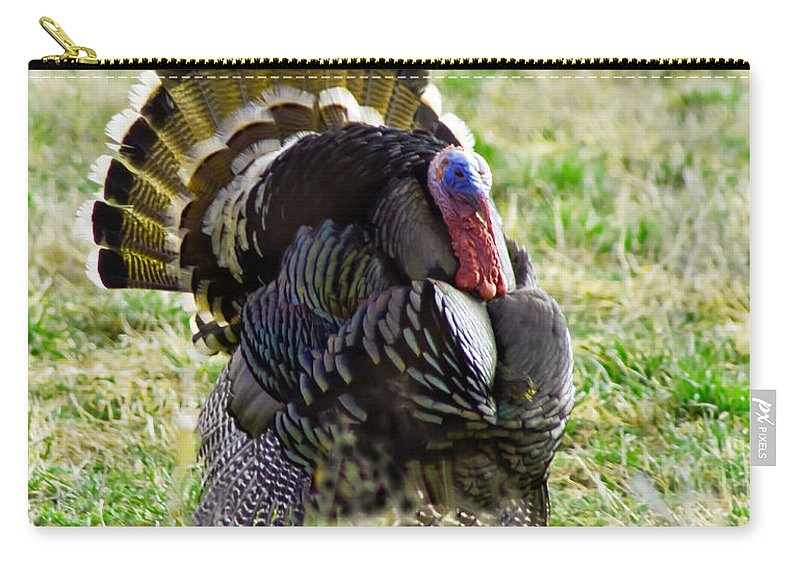 Birds Carry-all Pouch featuring the photograph Big Tom by Robert Bales