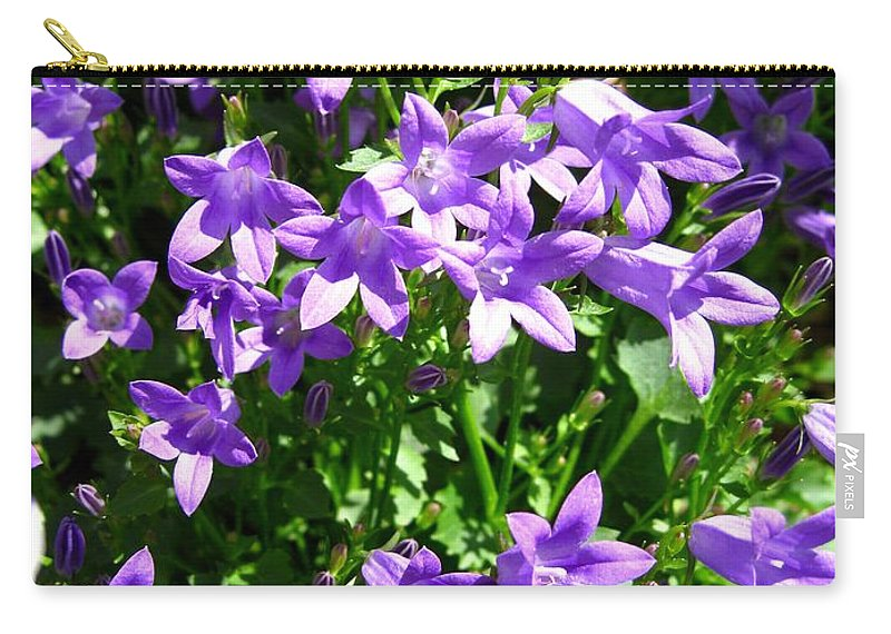 Mccombie Carry-all Pouch featuring the photograph Birch Hybrid Campanula by J McCombie