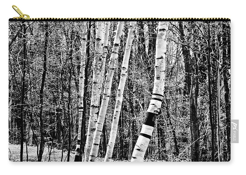And Carry-all Pouch featuring the photograph Birch Sentinels by Kristen Fox
