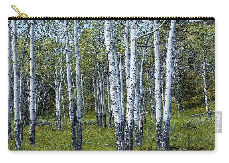 Art Carry-all Pouch featuring the photograph Birch Tree Grove No. 0133 A Fine Art Photograph by Randall Nyhof