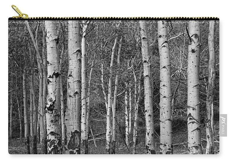 Art Carry-all Pouch featuring the photograph Birch Trees No.0148 by Randall Nyhof