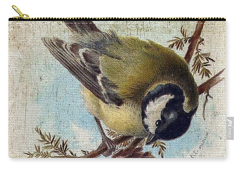 Vintage Carry-all Pouch featuring the digital art Bird And Pine Branch by Cassie Peters