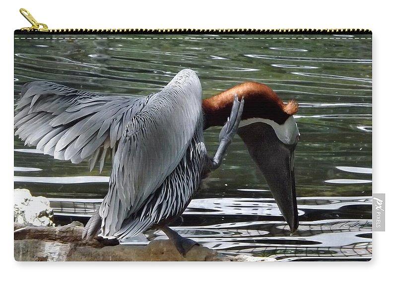 Bird Carry-all Pouch featuring the photograph Bird Dance by Linda Kerkau