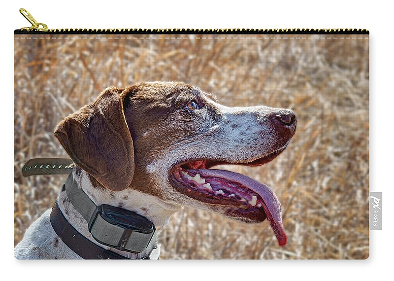 Dog Carry-all Pouch featuring the photograph Bird Dog - Profile by Nikolyn McDonald