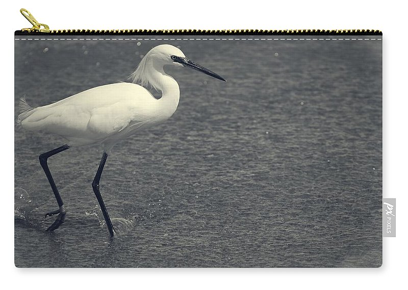 Bird Carry-all Pouch featuring the photograph Bird In The Water by Alice Gipson