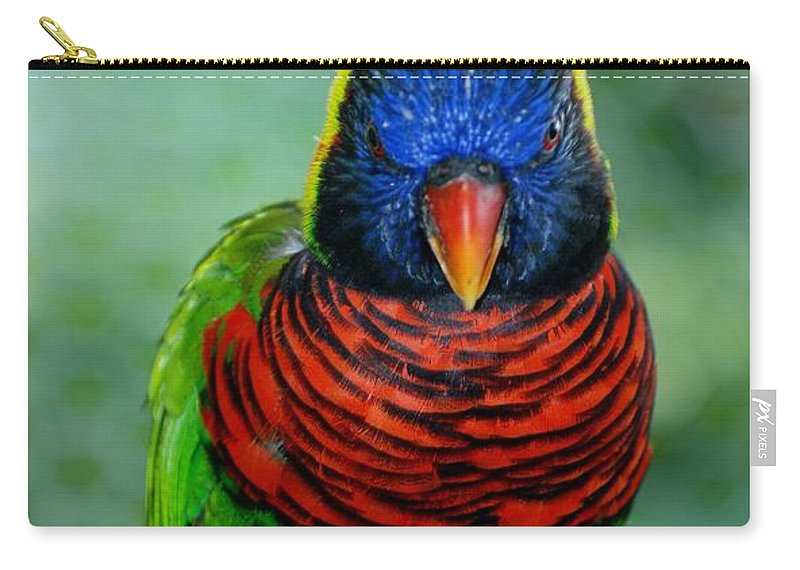 Macaws Carry-all Pouch featuring the photograph Bird In Your Face by Rob Hans