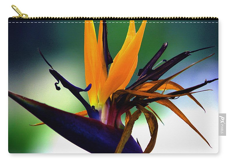 Bird Of Paradise Carry-all Pouch featuring the photograph Bird Of Paradise Flower - Square by Susanne Van Hulst