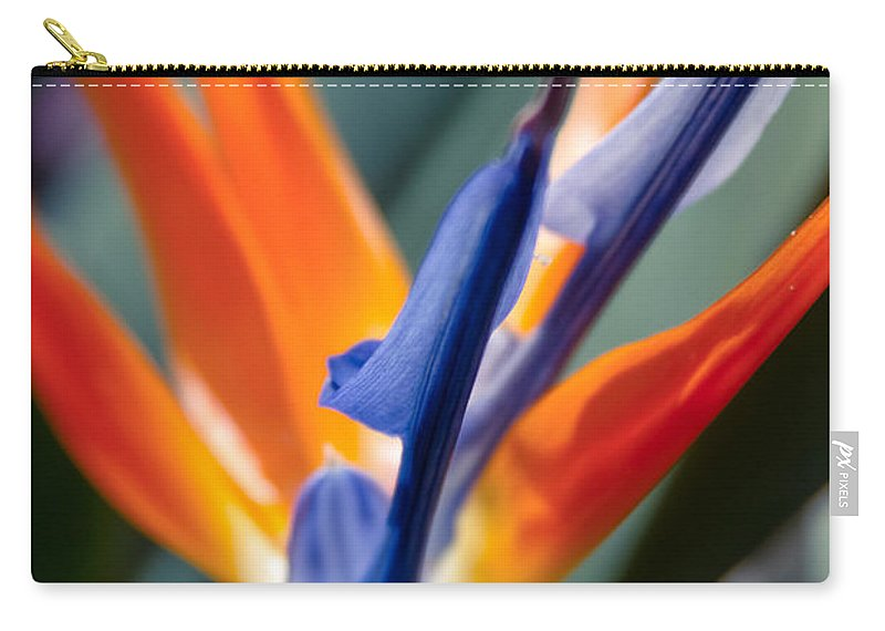 Bird Of Paradise Carry-all Pouch featuring the photograph Bird Of Paradise - Strelitzia Reginae by Sharon Mau