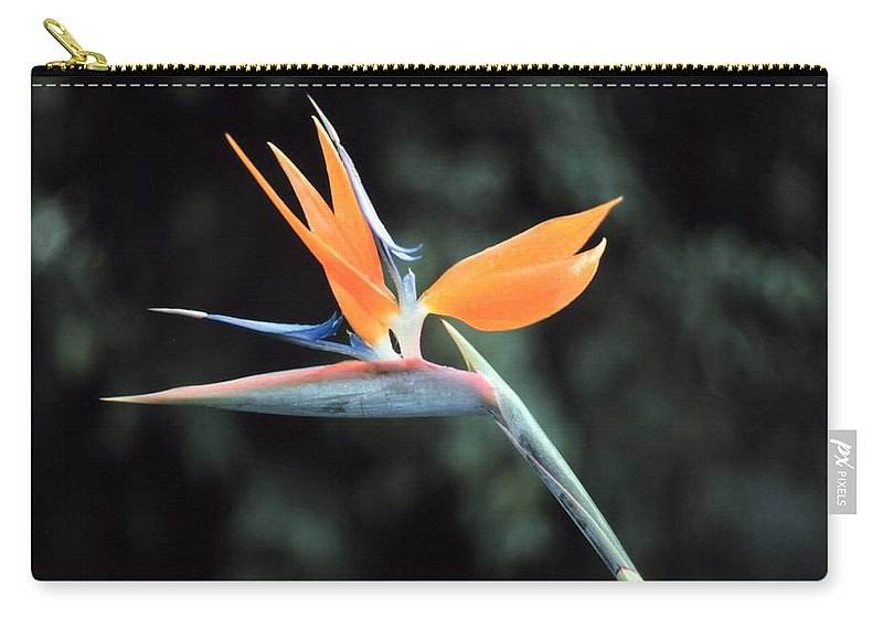 Bird Of Paridise Carry-all Pouch featuring the digital art Bird Of Paridise by John Bortniak