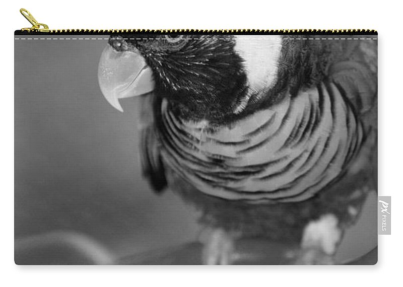 Macaws Carry-all Pouch featuring the photograph Bird On A Chain by Rob Hans