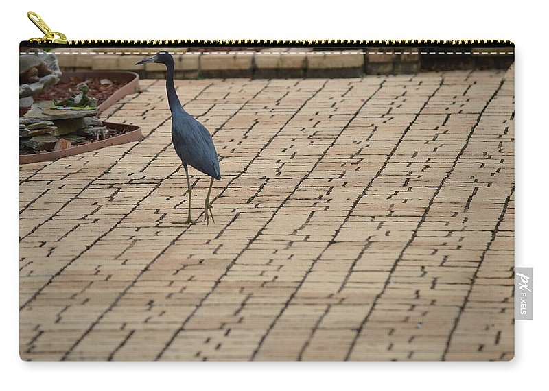 Florida Carry-all Pouch featuring the photograph Bird On Patio by Linda Kerkau