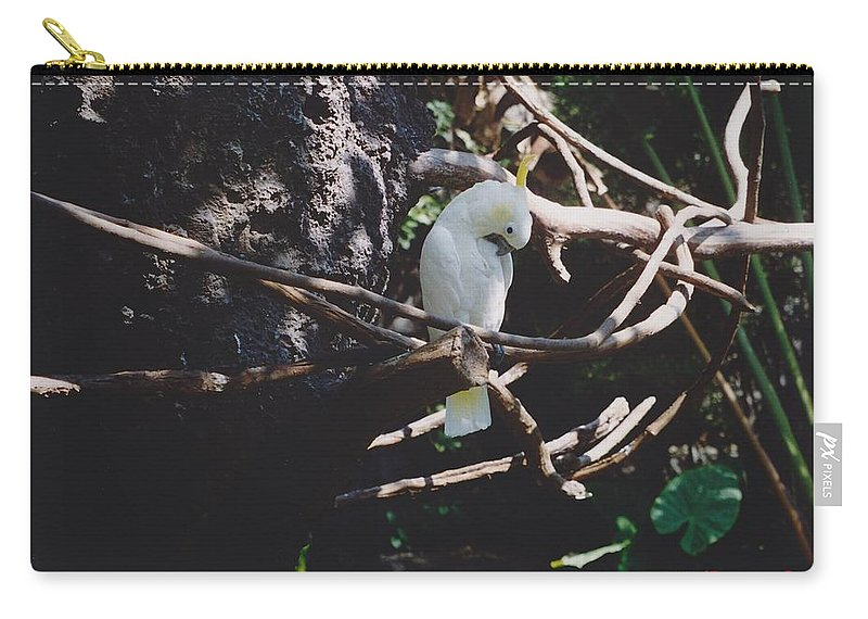 Nature Carry-all Pouch featuring the photograph Birdie Sitting In The Tree by Michelle Powell