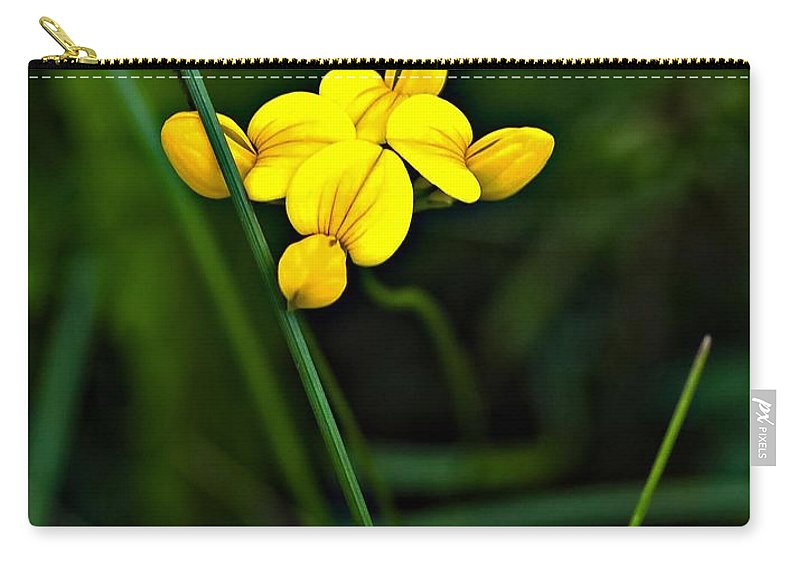 Flowers Carry-all Pouch featuring the photograph Bird's-foot Trefoil by Steve Harrington