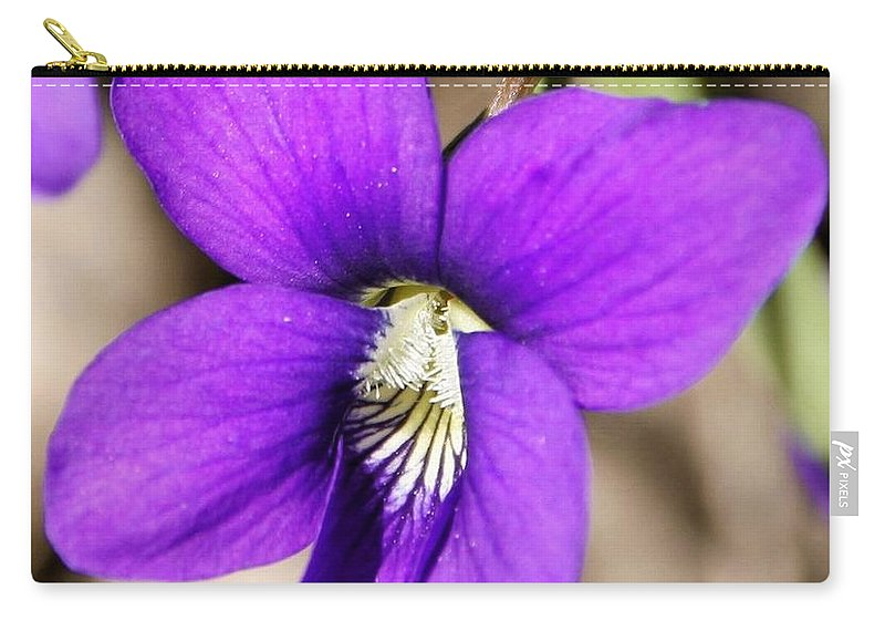 Birds Foot Violet Carry-all Pouch featuring the photograph Birds Foot Violet by Eric Noa