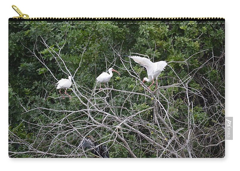 Florida Carry-all Pouch featuring the photograph Birds In The Brush by Linda Kerkau