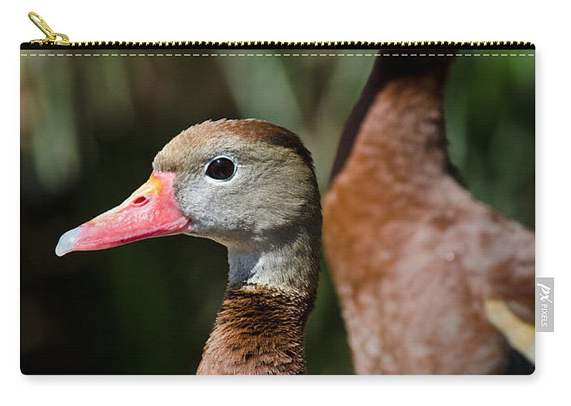 Bird Carry-all Pouch featuring the photograph Birds Of A Feather by Swift Family