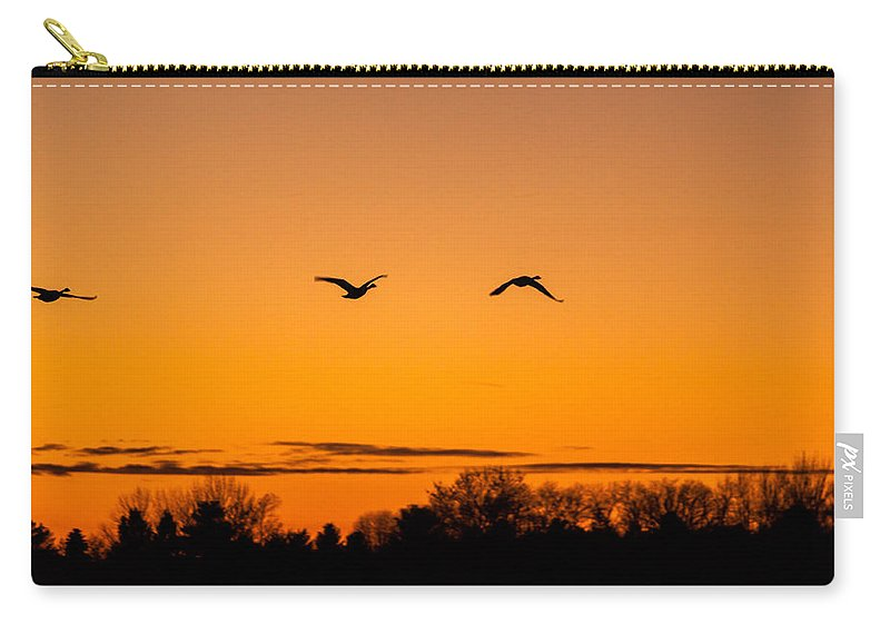 Goose Carry-all Pouch featuring the photograph Birds Of A Feather by Thomas Sellberg