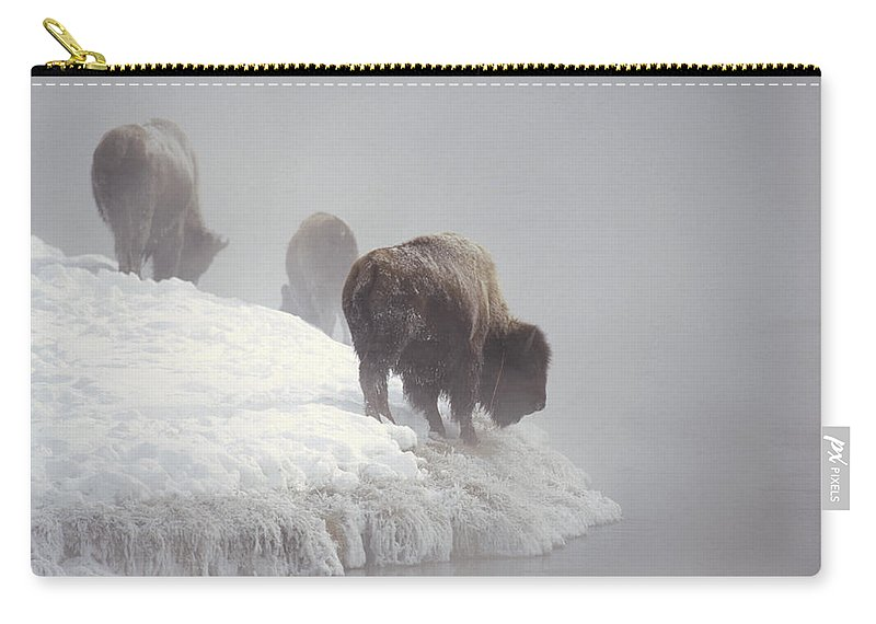 Feb0514 Carry-all Pouch featuring the photograph Bison Along Snowy Riverbank Yellowstone by Konrad Wothe