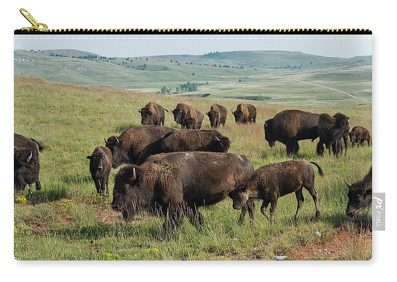 Grass Carry-all Pouch featuring the photograph Bison Buffalo In Wind Cave National Park by Mark Newman