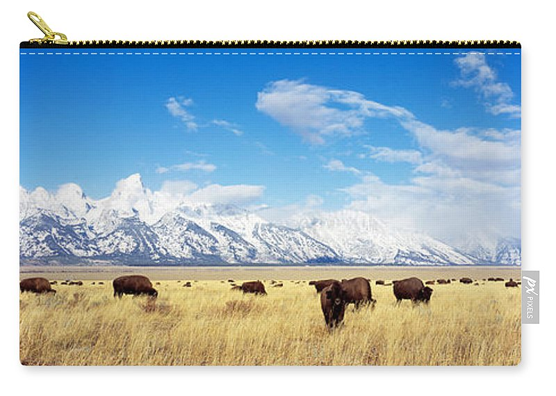 Photography Carry-all Pouch featuring the photograph Bison Herd, Grand Teton National Park by Panoramic Images