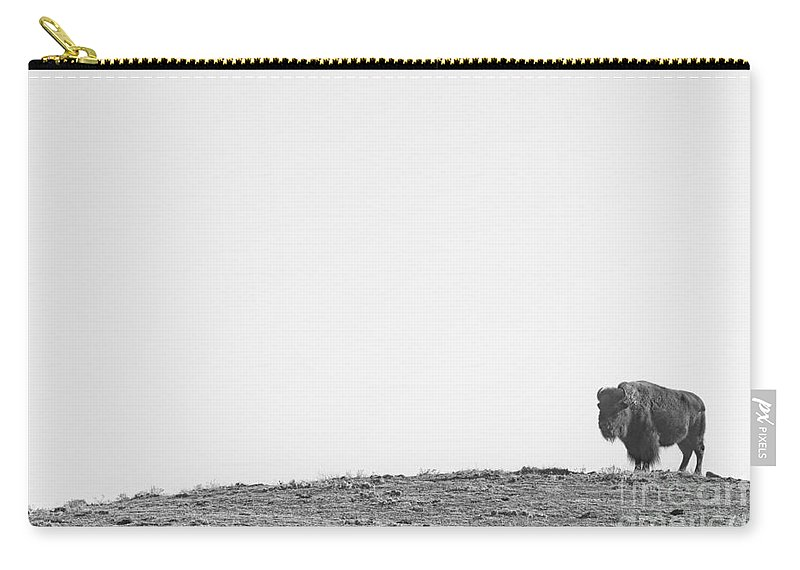 Buffalo Carry-all Pouch featuring the photograph Bison On A Hill Bw by James BO Insogna