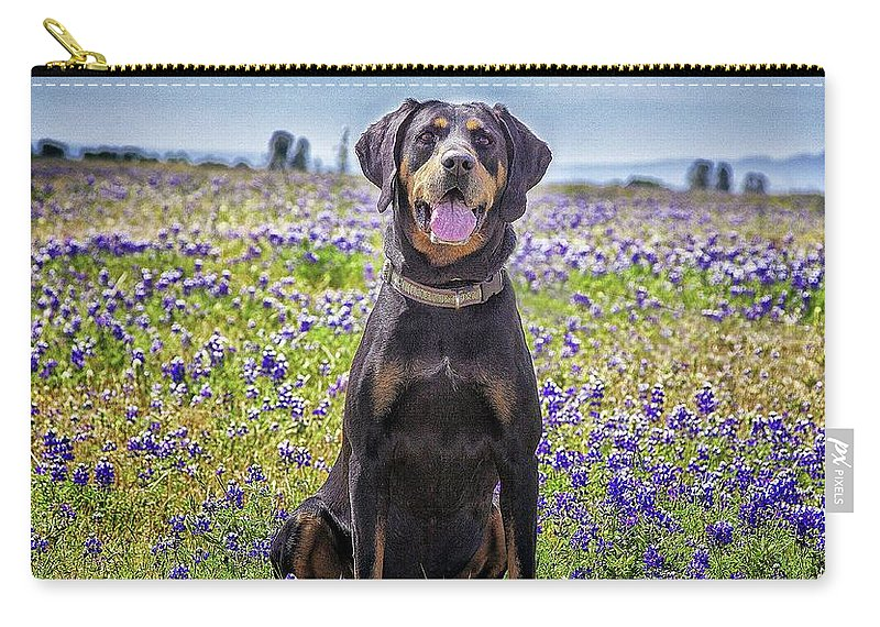 Animal Themes Carry-all Pouch featuring the photograph Black And Tan Coonhound In Field Of by Sunmallia Photography